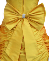 Amber Belle Gown (Back Zoom)